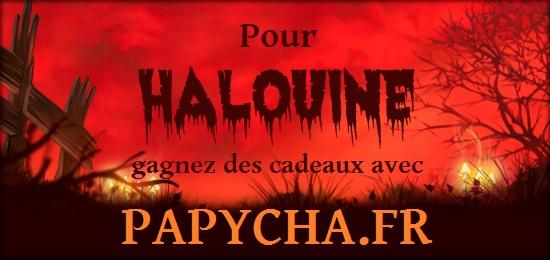 carrousel-haluine-2013-fr
